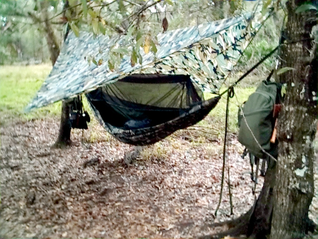 Dave Chinellu0027s Jungle Hammock hanging up somewhere. & Mosquito Hammock Customers
