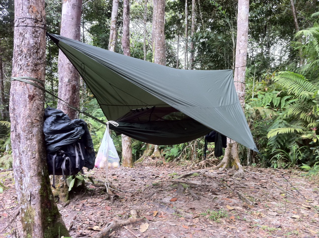 Medium image of tom fairweather u0027s jungle hammock  olive color  in the malaysian jungle